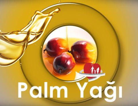 palm yagi