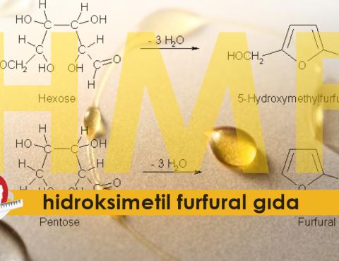 hidroksimetil furfural gıda